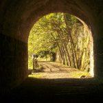 トンネルの先に。