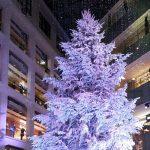 2018年まとめ 光と調和の紫色